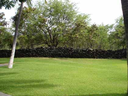 green-lawn-wall.jpg